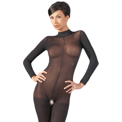 Long Sleeve Crotchless Sheer Bodystocking